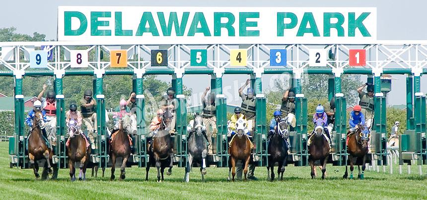 Hard Drive winning at Delaware Park on 8/9/12