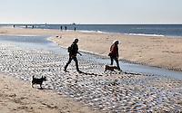 Nederland Texel 2015. Mensen met honden op het strand in De Koog