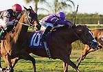 04 December 2010: Twilight Meteor and jockey  Luis Saez winning The Tropical Turf Handicap (Grade III) on December 4th, 2010 at Calder Race Course in Miami Gardens, FL.