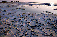 France, Camargue, Provence, cracked mud surface on lake's edge at sunset (Licence this image exclusively with Getty: http://www.gettyimages.com/detail/sb10068805aa-001 )