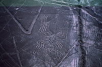 Aerials of the Nazca lines reveal a spider. Some are animal shapes such as a monkey, a lizard, a condor--that are 90 to 180 meters long.  It is believed that they were made by the Nazca and Paracas cultures during the period between 900 BC and 600 AD.
