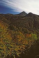 Europe/France/Auvergne/15/Cantal/Parc Naturel Régional des Volcans/Massif du Puy Griou (1694 mètres): La vallée de Mandailles