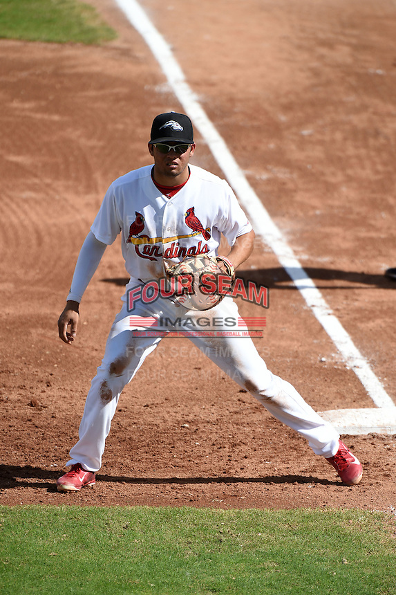 Peoria Javelinas infielder Breyvic Valera (31) during an Arizona Fall League game against the Scottsdale Scorpions on October 18, 2014 at Surprise Stadium in Surprise, Arizona.  Peoria defeated Scottsdale 4-3.  (Mike Janes/Four Seam Images)