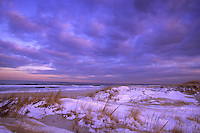 Snow covered Sand Dunes, Island Beach State Park, New Jersey