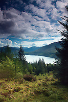 Loch Long and Arrochar from the Cat Craig Loop, the Argyll Forest Park above Glen Croe, Argyll & Bute