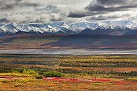 Autumn tundra, Mckinley River Bar, Alaska Range mountains, Denali National Park, Interior, Alaska.