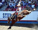 Cody Wright of Milford, Utah, scores an 83 point ride on the Beutler & Son Rodeo Company bronc Al Capone to win short go action at the Greeley Independence Stampede Rodeo on July 4, 2008.