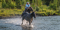Cowboy roping a horse while crossing a Wyoming River like most Cowboys and cowgirls living the western lifestyle. Fine Art Limited Edition Photography Of American Cowboys and Cowgirls by Jess Lee