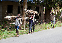 Zanzibar, Tanzania.  Boys Carrying Firewood along a Country Road.