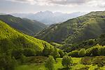 Italy, Tuscany, San Pellegrino in Alpe: View over the Orecchiella and Alpi Apuane mountains | Italien, Toskana, San Pellegrino in Alpe: Blick ueber den Parco dell'Orecchiella in die Apuanischen Alpen