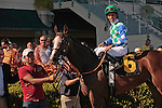 Holiday Broad with Jose Lezcano up after winning at Gulfstream Park, Hallandale Beach Florida.