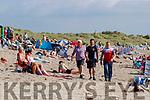 Sonny Foran, Richie Stack and Risteárd Ó Fuaráin at Ballyheigue beach on Wednesday.