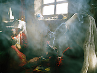 Smoking opium and cigarettes is a common habit amongst Kyrgyz men and women. .Campment of Tash Seri..Winter expedition through the Wakhan Corridor and into the Afghan Pamir mountains, to document the life of the Afghan Kyrgyz tribe. January/February 2008. Afghanistan