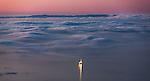Oil platform in Santa Barbara Channel, Santa Cruz Island, California