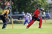 Cricket - Wakatu v Stoke Nayland