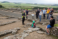 Northumberland,  England, UK.  Guide Explaining Use of the Barracks by Roman Soldiers, Housesteads Roman Fort (Vercovicium).