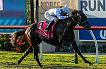 DEL MAR, CA  AUGUST 7:  #8 Princess Grace, ridden by Kent Desormeaux,<br /> in the stretch of the Yellow Ribbon Handicap (Grade ll), on August 7, 2021, at Del Mar Thoroughbred Club in Del Mar, CA. (Photo by Casey Phillips/Eclipse Sportswire/CSM)