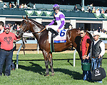 LEXINGTON, KY - APRIL 08: Irap wins the 93rd running of the Toyota Blue Grass (Grade 2) $1,000,000 for owner Reddam Racing, trainer Doug O'Neill and jockey Julien Leparoux.  April 08, 2010