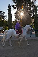 Julie's Horses - Reinstein Ranch - 2012