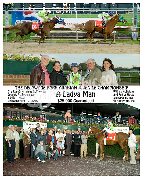 A Ladys Man winning The Delaware Park Arabian Juvenile Championship at Delaware Park on 10/26/09
