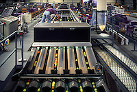 Tomatoes enter a labeling machine via a conveyor belt in a tomato packing plant in the San Joaquin Valley, California. San Joaquin Valley, California, USA