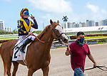 February 27, 2021:  Annex #2, ridden by Junior Alvarado, holds off #3, Scarlett Sky and Jose Ortiz to win the Palm Beach Stakes on the turf on Fountain of Youth Day at Gulfstream Park in Hallandale Beach, Florida. Liz Lamont/Eclipse Sportswire/CSM