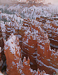 Bryce Canyon National Park, UT<br /> Hoodoos and ridges of the Silent City in lifting fog and clearing winter storm at Bryce Creek Canyon