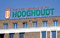 Nederland  Groningen - 2019 .  Hooghoudt op de Grote Markt.  Foto Berlinda van Dam / Hollandse Hoogte