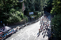 up the Keizerberg<br /> <br /> Women Elite - Road Race (WC)<br /> from Antwerp to Leuven (158km)<br /> <br /> UCI Road World Championships - Flanders Belgium 2021<br /> <br /> ©kramon (pic by Sigfrid Eggers)