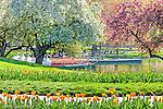 Springtime in the BostonPublic Garden, Boston, MA, USA