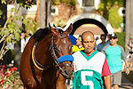 DEL MAR, CA  AUGUST 13:  Klimt enters the paddock before the Best Pal Stakes (Gll) Del Mar Turf Club in Del Mar, CA on August 13, 2016. (Photo by Casey Phillips/Eclipse Sportswire/Getty Images)DEL MAR, CA  AUGUST 13:  at Del Mar Turf Club on August 6, 2016 at Del Mar, CA (Photo by Casey Phillips/Eclipse Sportswire/Getty Images)