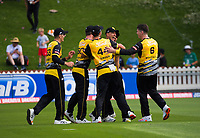 The Firebirds celebrate Logan Van Beek's spectacular one-handed diving catch during the men's Dream11 Super Smash cricket match between the Wellington Firebirds and Northern Knights at Basin Reserve in Wellington, New Zealand on Saturday, 9 January 2021. Photo: Dave Lintott / lintottphoto.co.nz