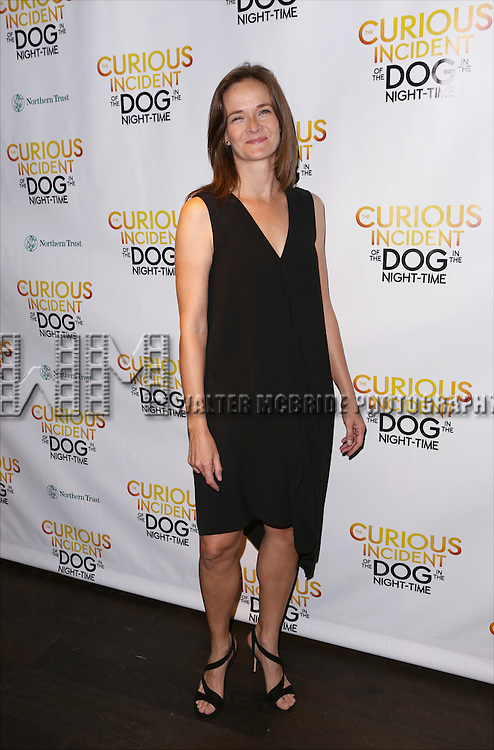 Enid Graham attends the Broadway Opening Night Performance After Party for 'The Curious Incident of the Dog in the Night-Time'  at Urbo on October 5, 2014 in New York City.