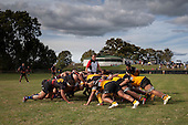 Referee Graham Eddy watches Tai Natuna feed a defensive scrum for Onewhero. Counties Manukau Premier Club rugby game between Te Kauwhata and Onewhero, played at Te Kauwhata on Saturday April 16th 2016. Onewhero won the game 37 - 0 after leading 13 - 0 at Halftime. Photo by Richard Spranger.