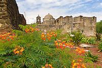 Mission San Jose garden and cross, San Antonio, Texas.<br /> <br /> Canon EOS 30D, 17-40 f/4L lens