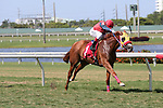 July 19, 2015: Two year old, Get a Room (FL), with jockey Harry Hernandez on board, breaks her maiden at Gulfstream Park in Hallandale Beach, FL.  #3 Golden Pirate (FL) takes 2nd. Liz Lamont/ESW/CSM
