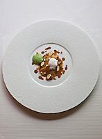 Europe/France/Bretagne/56/Morbihan/Lorient:   Ravioli au foie gras, jus corsé de canard, légumes cuits et crus, noisettes fraîches recette de Philippe  Le Lay  du  Restaurant: Henri & Joseph