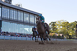 April 10, 2021: #6 C Z Rocket, ridden by Florent Geroux wins the Count Fleet Sprint Handicap  for trainer Peter Miller at Oaklawn Park in Hot Springs,  Arkansas. Ted McClenning/Eclipse Sportswire/CSM