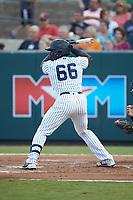 Jordan Scott (66) of the Pulaski Yankees at bat against the Princeton Rays at Calfee Park on July 14, 2018 in Pulaski, Virginia. The Rays defeated the Yankees 13-1.  (Brian Westerholt/Four Seam Images)