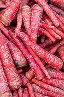 India, Dehradun.  Carrots in the Market.