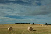 Hay Bales near Smailholm, Scottish Borders