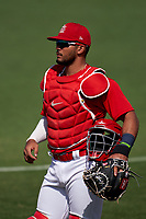 St. Louis Cardinals catcher Ivan Herrera (47) during a Major League Spring Training game against the Houston Astros on March 20, 2021 at Roger Dean Stadium in Jupiter, Florida.  (Mike Janes/Four Seam Images)