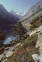 Europe/France/Midi-Pyrénées/65/Hautes-Pyrénées/Massif de Vignemale: Lac de Gaube
