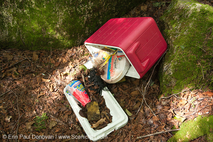 """Poor """"Leave No Trace"""" habits on the the side a Sawyer River Trail in the White Mountains, New Hampshire USA"""