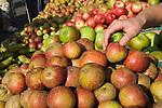 Organic Cox's apples. Blackheath Farmers Market. South East London. UK 2008.