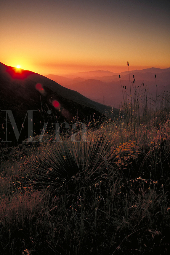 SUNSET , SANTA YNEZ MOUNTAINS , LOS PADRES     NATIONAL FOREST. SANTA BARBARA CALIFORNIA USA.