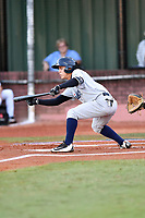 Pulaski Yankees shortstop Eduardo Torrealba (13) squares to bunt during game one of the Appalachian League Championship Series against the Elizabethton Twins at Joe O'Brien Field on September 7, 2017 in Elizabethton, Tennessee. The Twins defeated the Yankees 12-1. (Tony Farlow/Four Seam Images)