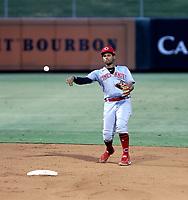Braylin Minier - 2021 Arizona League Reds (Bill Mitchell)