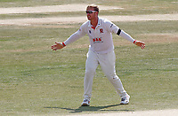 Simon Harmer of Essex appeals for a wicket during Essex CCC vs Surrey CCC, Bob Willis Trophy Cricket at The Cloudfm County Ground on 11th August 2020
