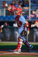 Auburn Doubledays catcher Tres Barrera (15) during a game against the Mahoning Valley Scrappers on July 19, 2016 at Falcon Park in Auburn, New York.  Mahoning Valley defeated Auburn 9-1.  (Mike Janes/Four Seam Images)